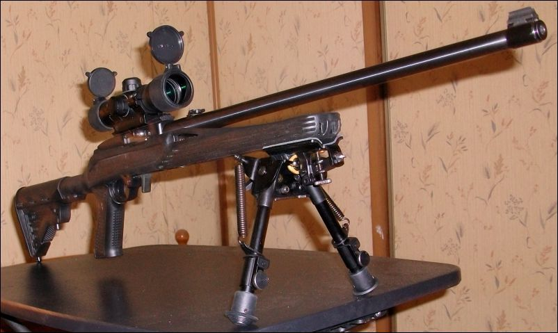 bipod for ruger 10/22