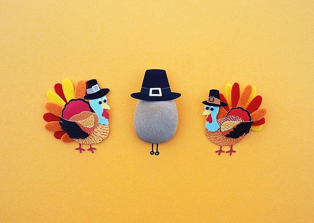 best turkey calls