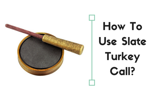 how to use slate turkey call