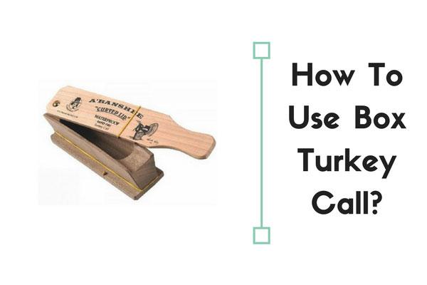 how to use box turkey call