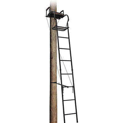 Big Dog Foxhound Ladder Treestand