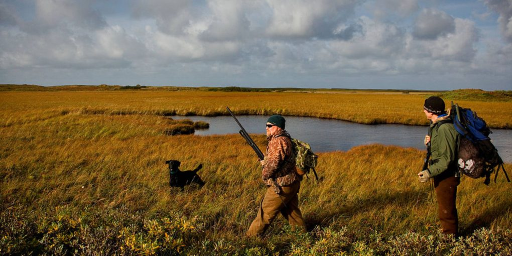 men doing duck hunting on the field