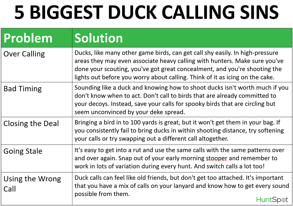 duck calling mistake infographic