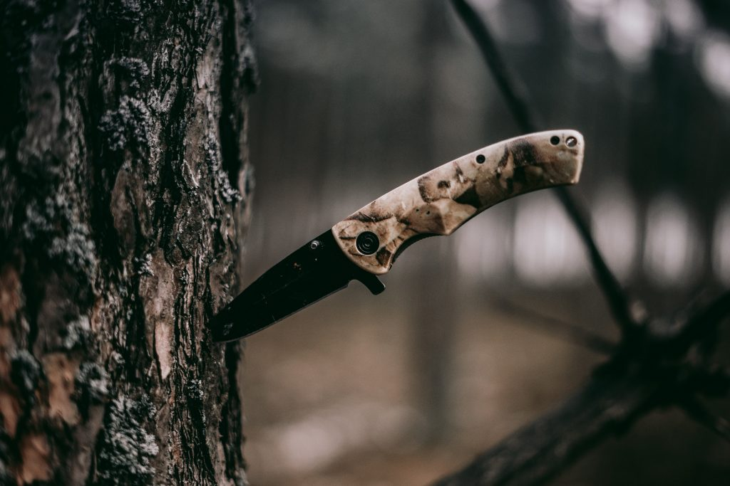 a hunting knife stuck on a trunk of a tree