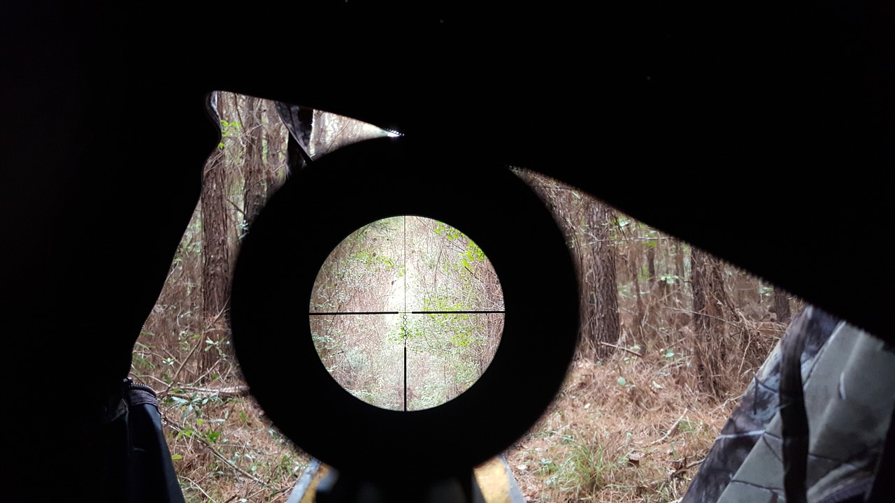 Clear target view inside rifle scope